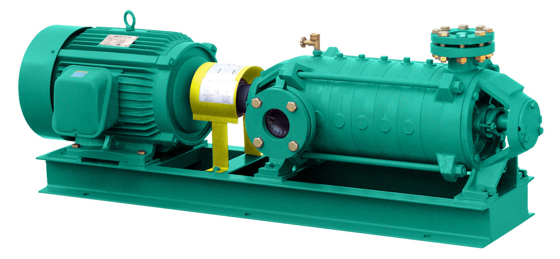 Ring Section Pumps